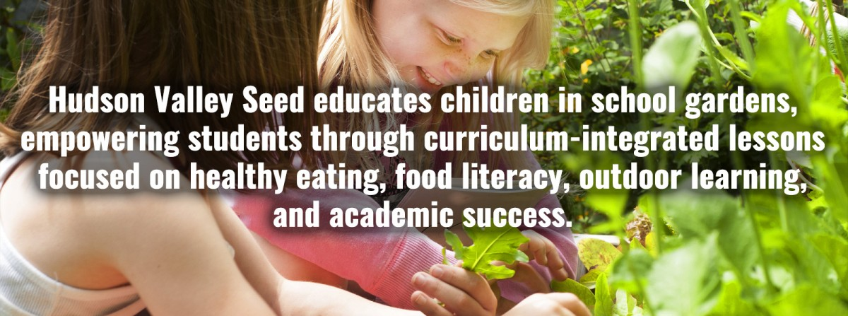 Hudson Valley Seed educates children in school gardens, empowering students through curriculum-integrated lessons focused on healthy eating, food literacy, outdoor learning, and academic success.