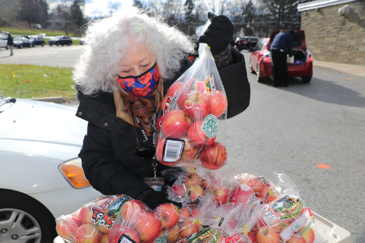 NECSD Board of Education President, Ms. Carole Mineo distributes bags of apples that were grown locally.