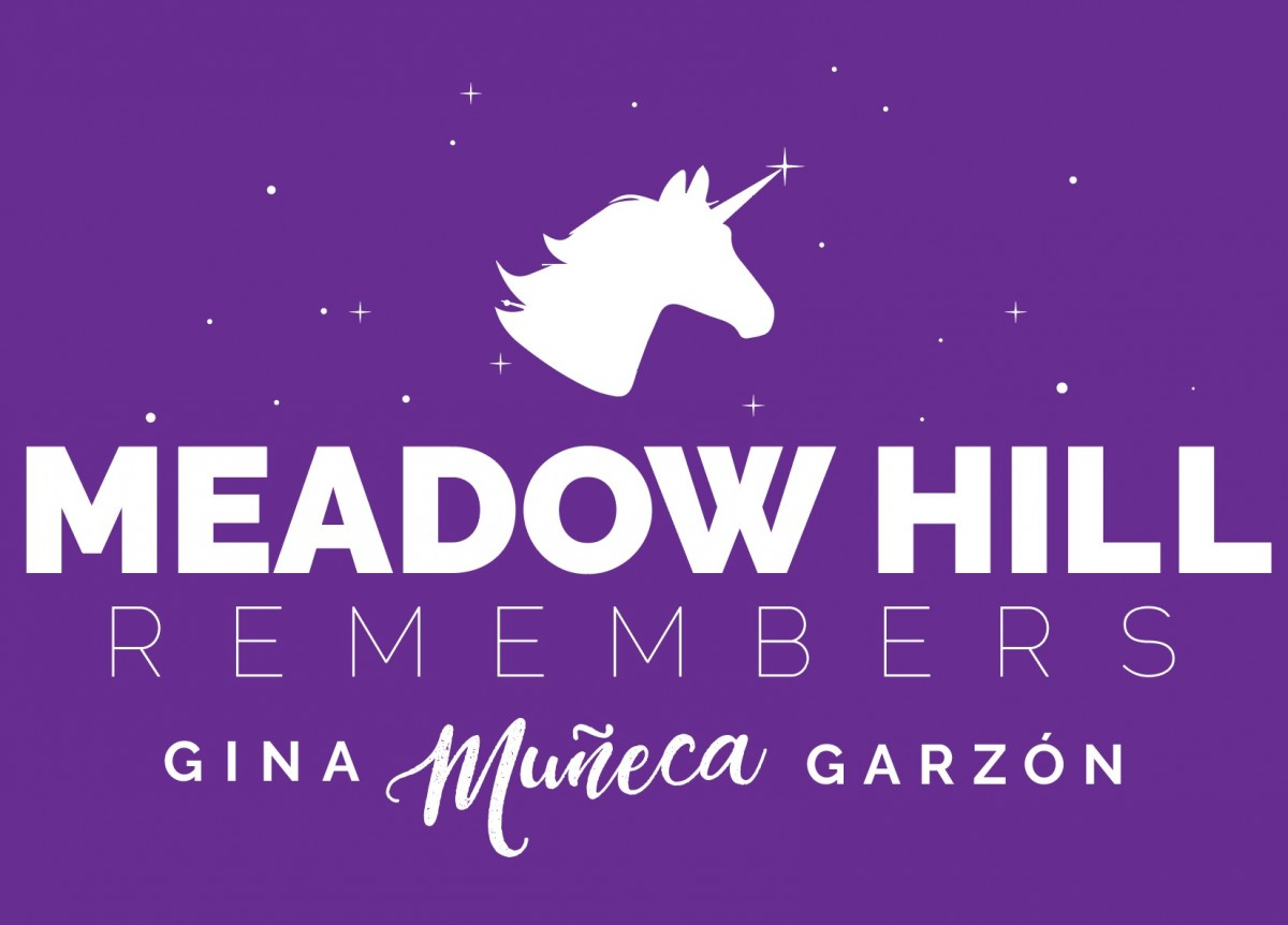 Thumbnail for Meadow Hill School Fundraiser for Student