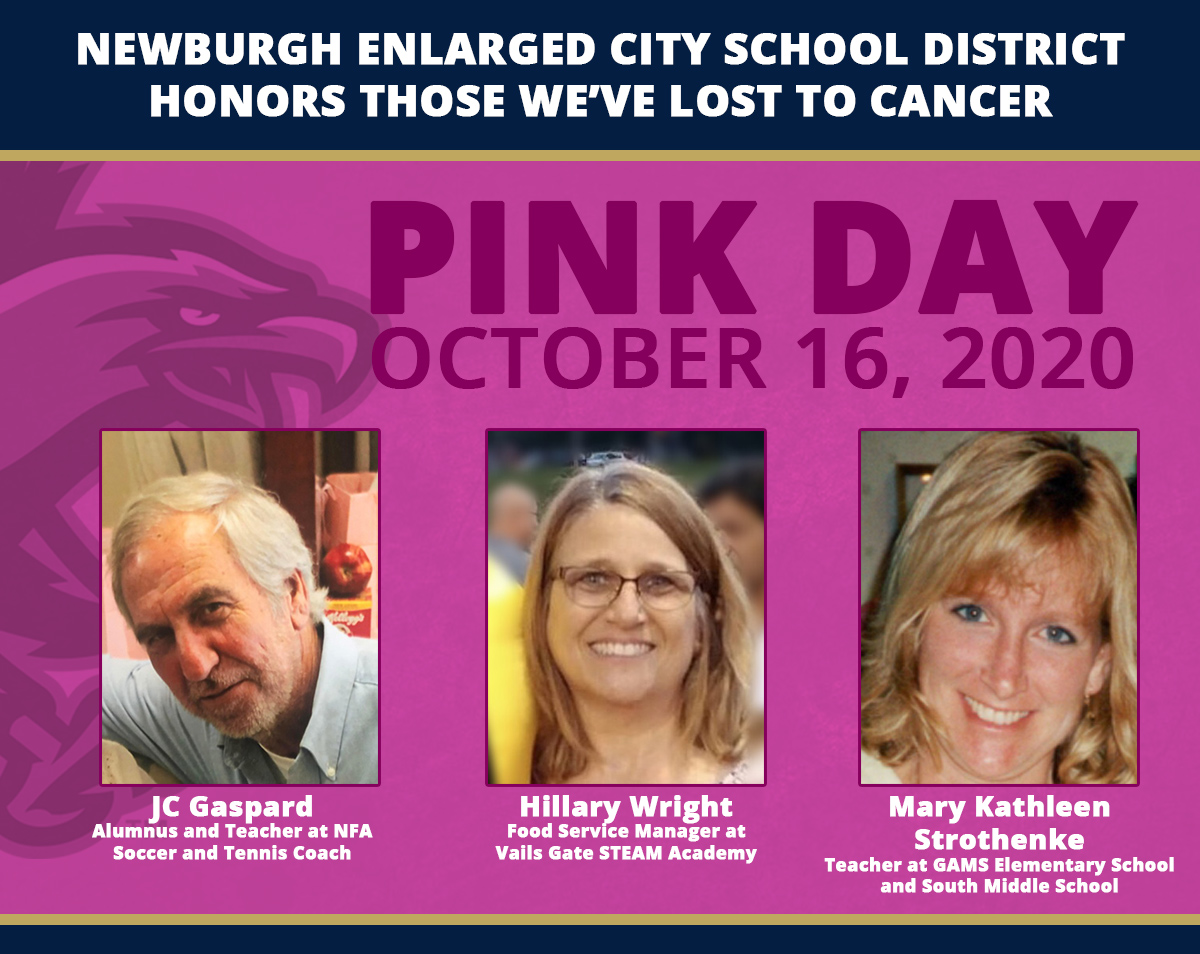 Thumbnail for NECSD Virtual Pink Day 2020