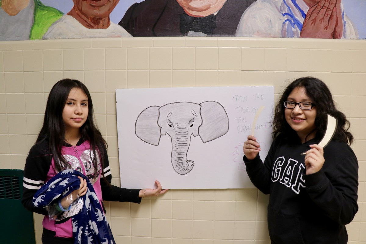 Students pose next to pin the tusks on the elephant