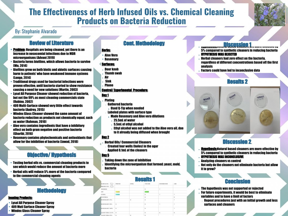 Stephanie Alvarado: The Effectiveness of Herb Infused Oils vs. Chemical Cleaning Products on Bacteria Reduction