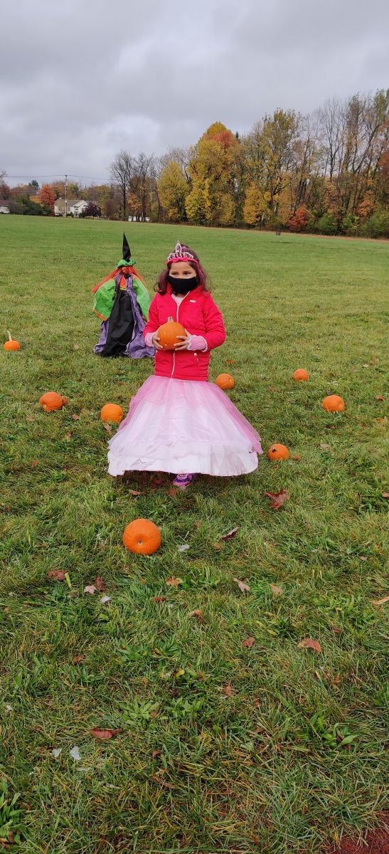 Student picks pumpkin from pumpkin patch.