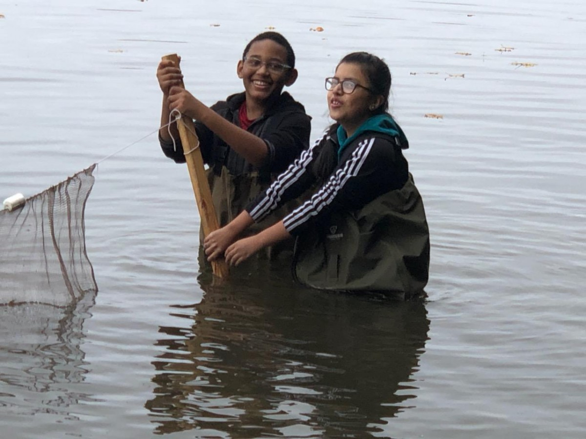 Scholars in the water studying the river.