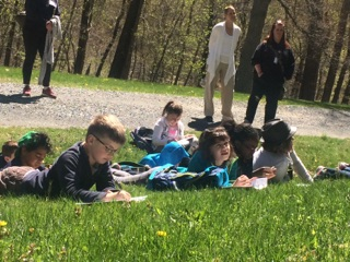 Students on grass outside working.