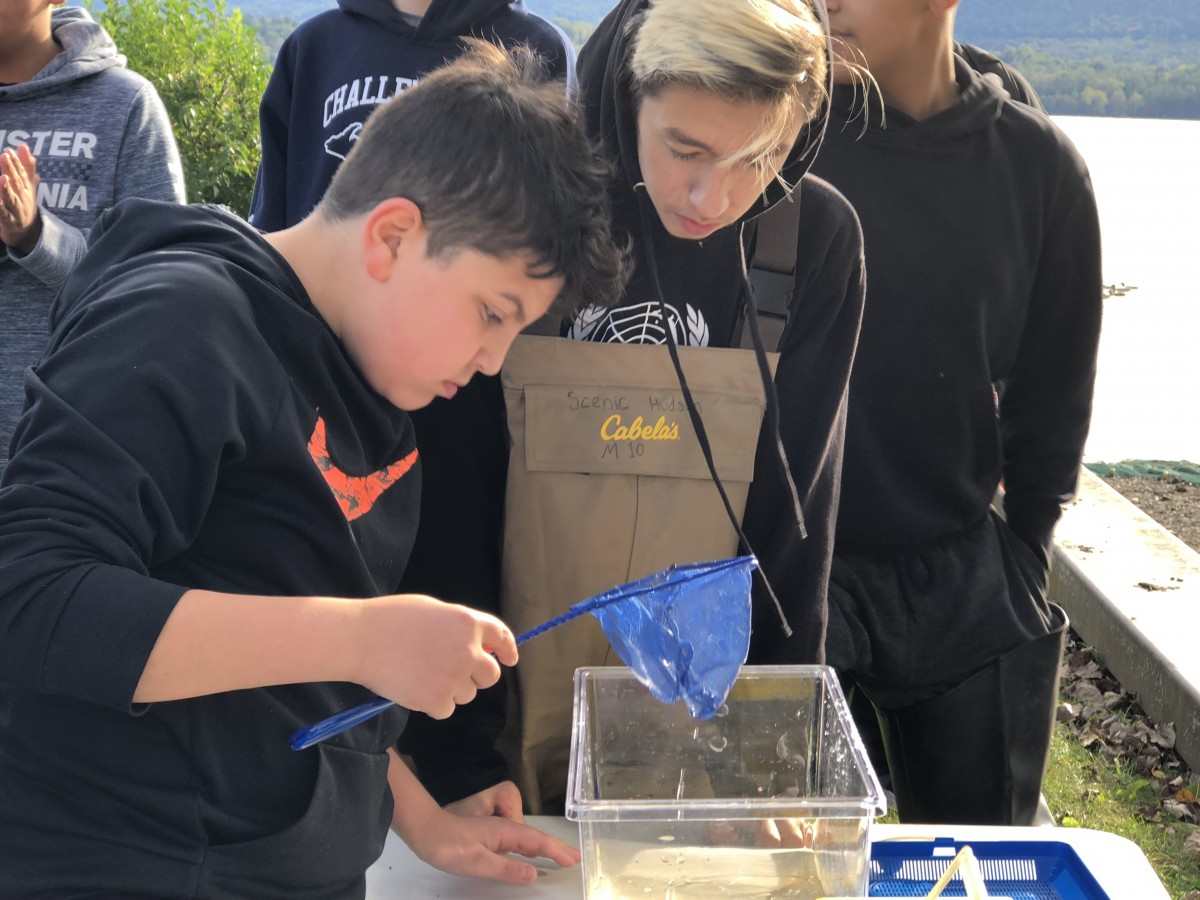 Students examining fish from the nets