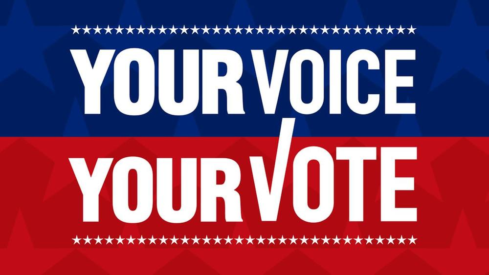 Thumbnail for Social Studies Department Promotes Voter Registration